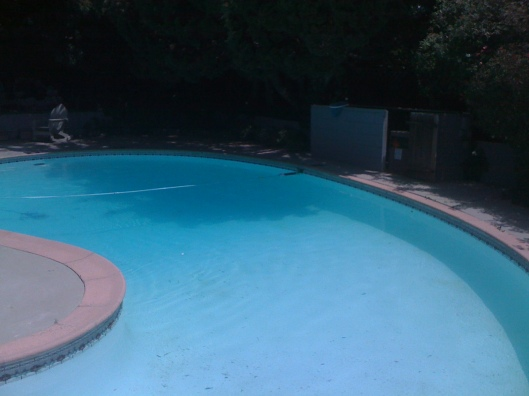 Pool Before Shot